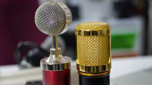 BM800 Microphone (Gold)