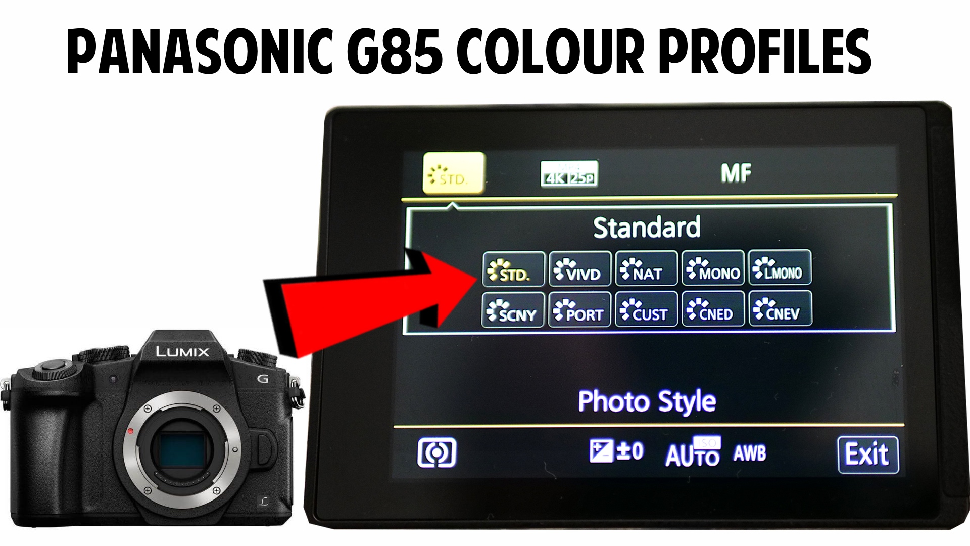 Panasonic G85 Color Profiles Explained